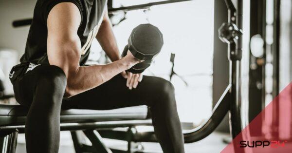 Spieropbouw: Full Body Workout by trainer Nick van Eijk