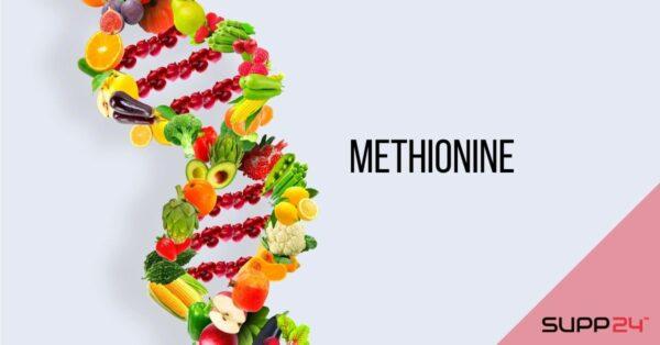 Methionine: Een essentieel aminozuur met antioxiderend effect