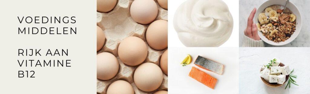 Voedingsmiddelen vitamine b12